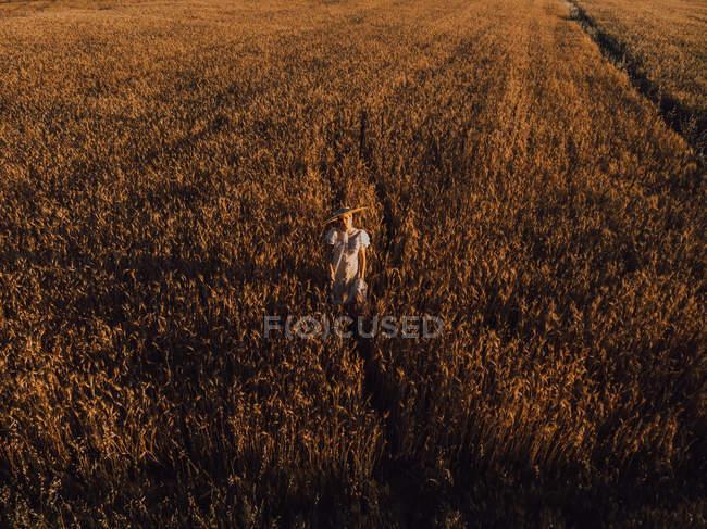 Женщина в большой круглой шляпе посреди пшеничного поля — стоковое фото