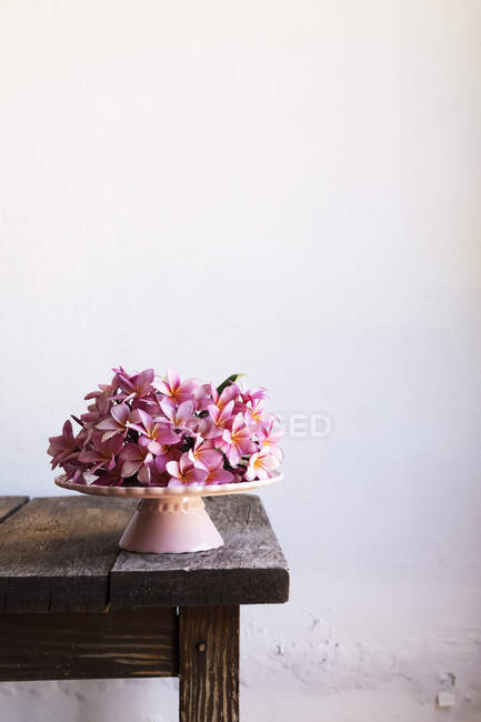 Heap of delicate pink flowers placed on dessert plate on old table against white wall — Stock Photo