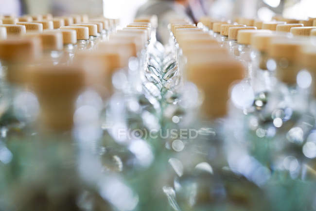 Blurred lines of glass bottles with lids in daylight — Stock Photo