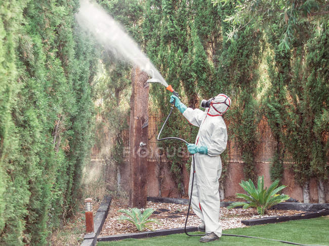 Specialist in green gloves, respiratory mask and uniform holding hose and spraying chemical on green on fence in yard — Stock Photo