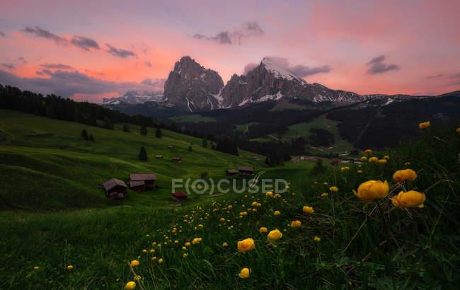Живописный пейзаж зеленой равнины с домами и скалистыми горами на закате — стоковое фото