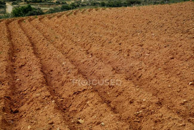 Preparação agrícola do solo para plantação em campo arado — Fotografia de Stock