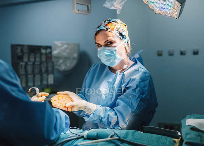 Doctor in surgical gown holding prepared silicone implant for mammoplasty and crop nurse assisting during operation — Stock Photo