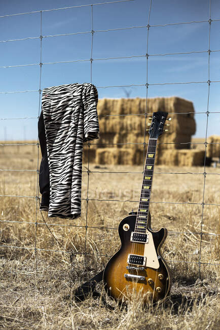 Stilvolle Musikinstrumentengitarre und trendiger Zebramantel, der bei hellem Tag auf Stacheldraht gegen trockenen Heuhaufen im Feld hängt — Stockfoto