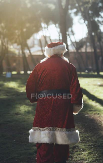 Назад вид невпізнанний старший чоловік у костюмі Діда Мороза ходьба в природі в сонячний день — стокове фото