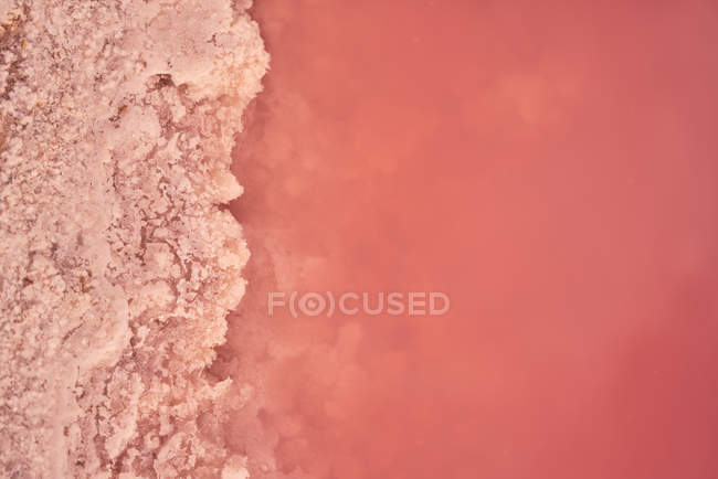 Salty pink water on seashore, full frame — Stock Photo