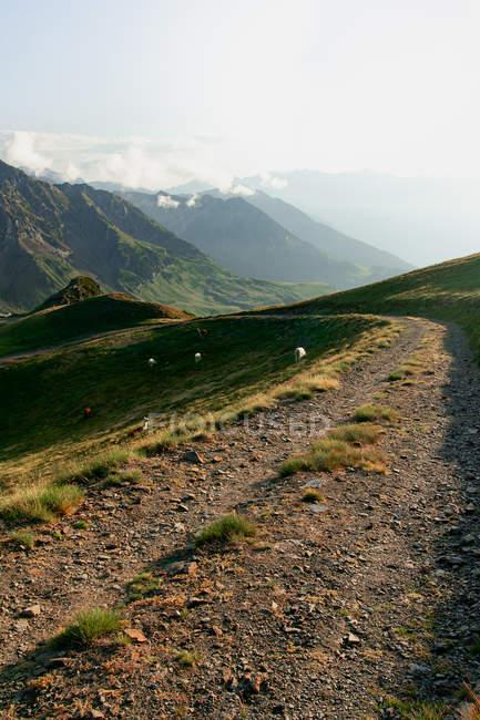 Sentiero sterrato che si estende nell'entroterra a montagne muschiate in nebbia nebbiosa sotto il cielo nuvoloso — Foto stock