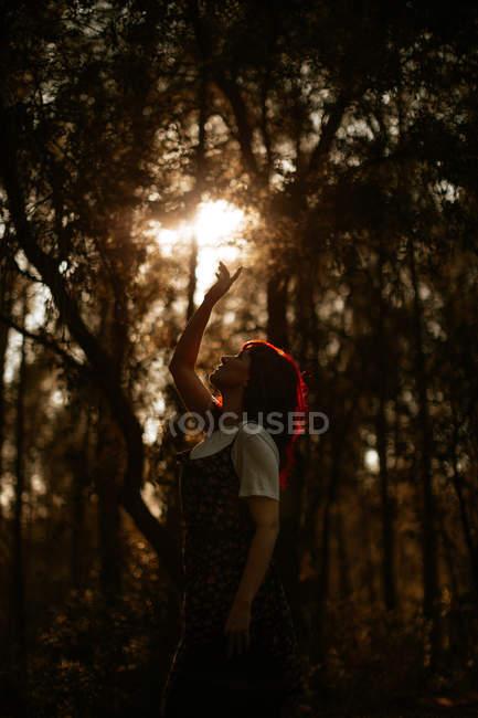 Seitenansicht einer jungen Frau, die den Arm hebt und helles Sonnenlicht berührt, während sie im Abendwald im Gegenlicht gegen Bäume steht — Stockfoto