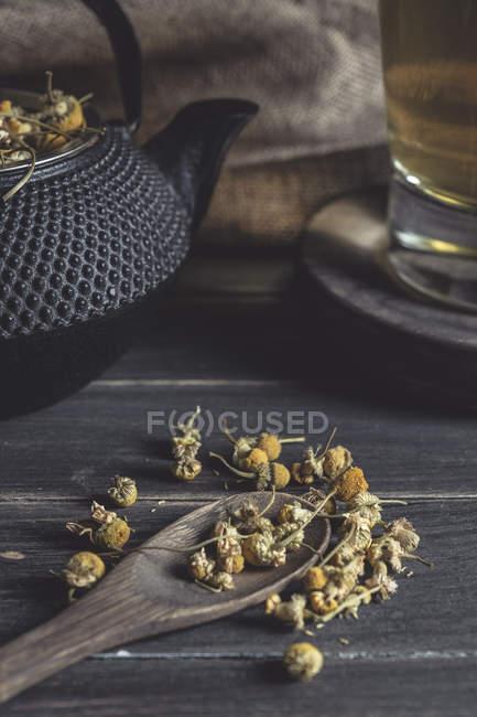 Сверху сушеная маргаритка в ложке на темном деревянном столе возле чашки с травяным чаем — стоковое фото