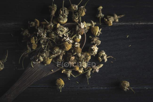 Gros plan de tas de marguerites séchées dans une cuillère en bois sur une table noire pour la fabrication du thé — Photo de stock