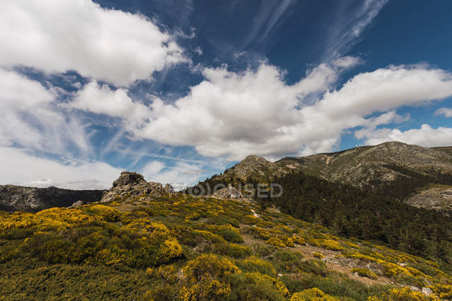 Amazing landscape of stone hills covered by dry grass under big fluffy white clouds on sky — Stock Photo