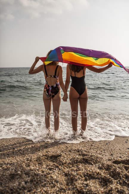 Вид сзади лесбийской пары, стоящей на пляже с цветным флагом движения Lga во время летних каникул — стоковое фото