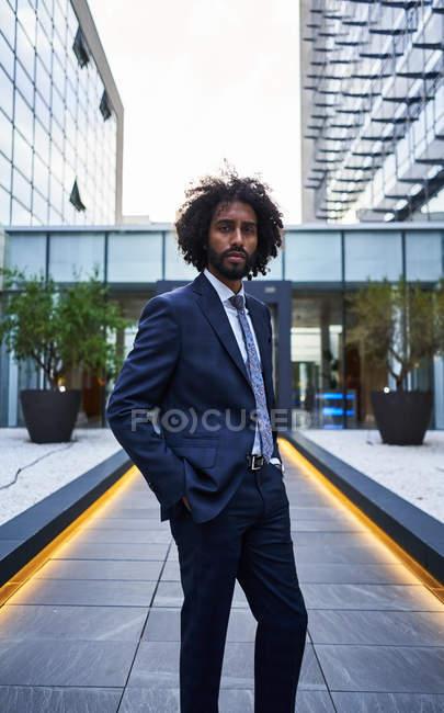 Seriöser afrikanisch-amerikanischer Unternehmer in formeller Kleidung und mit lockigem Haar, der in die Kamera blickt — Stockfoto