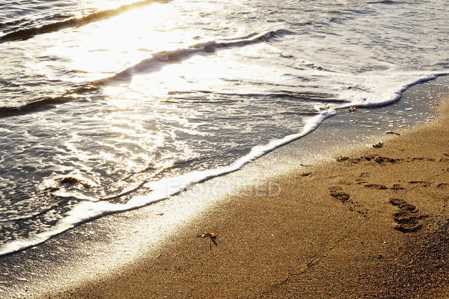 Wet sandy shore on sunny daytime in Norway beach — Stock Photo