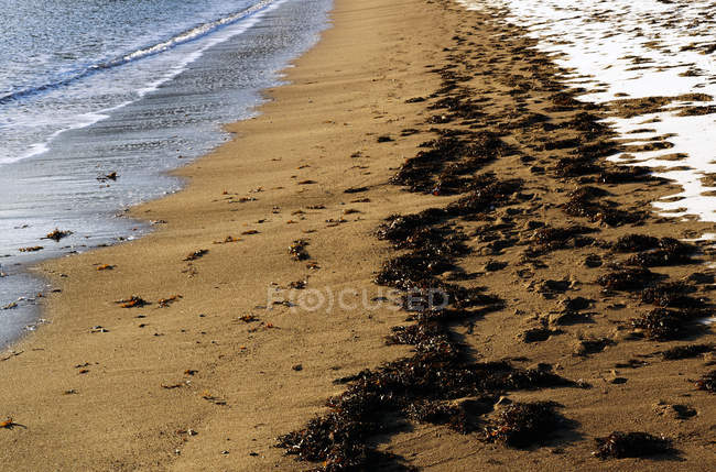 Snow covering wet sandy shore on sunny daytime in Norway beach — Stock Photo