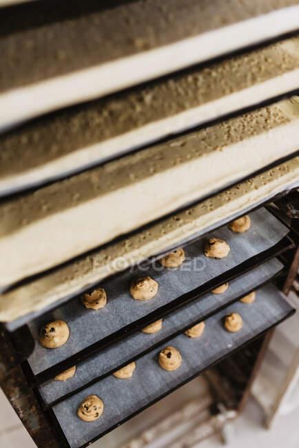 Металлический поднос с вкусной выпечкой в форме свиньи помещен на стойку в профессиональной пекарне — стоковое фото