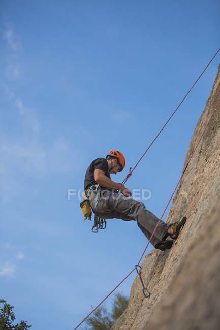From below man climbing a rock in nature with climbing equipment - foto de stock