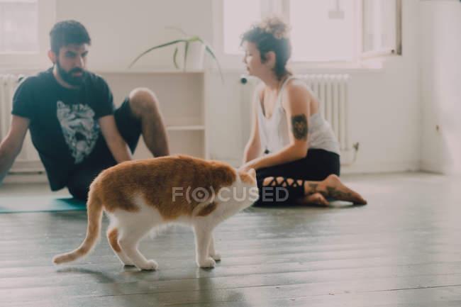 Вид сбоку имбирной кошки рядом с нежной парой, сидящей дома на полу — стоковое фото