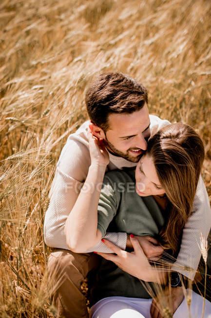 Liebhaber umarmen sich auf dem Weizenfeld — Stockfoto