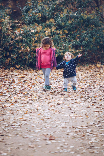 Little girl holding hand of toddler while walking along path with fallen leaves in autumn park — Stock Photo