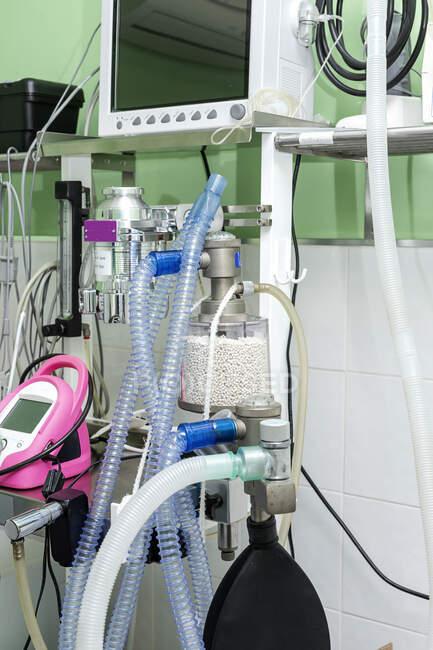 Підрозділ інтенсивної терапії, оснащений монітором карбюраторних труб для кисню та різних медичних інструментів у ветеринарній клініці. — стокове фото