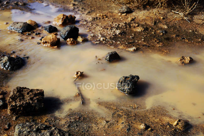 Сверху болото с мутной мутной водой, коричневая почва и черные скалы — стоковое фото