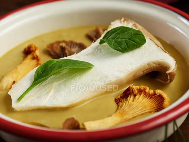 Nahaufnahme von leckerpilzcremesuppe mit provenzalischen Kräutern mit Blättern aus frischem Basilikum — Stockfoto