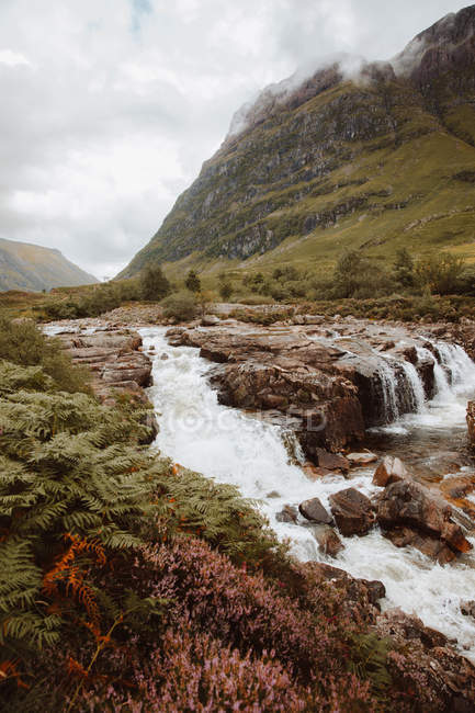 Picturesque view of bubbling water with rocks and ferns in mountain valley of Glencoe on summertime — Stock Photo