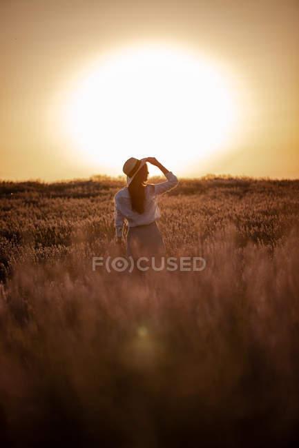 Молодая женщина, стоящая в цветах на большом лавандовом поле в сельской местности на закате . — стоковое фото