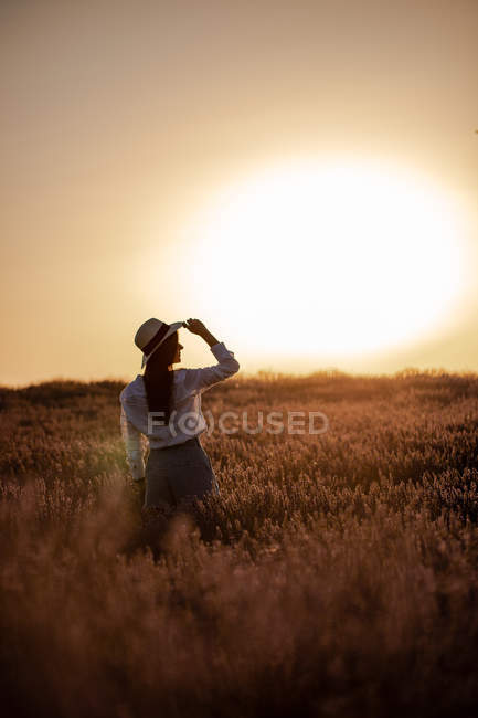 Young woman standing in flowers in large lavender field in countryside at sunset. — Stock Photo
