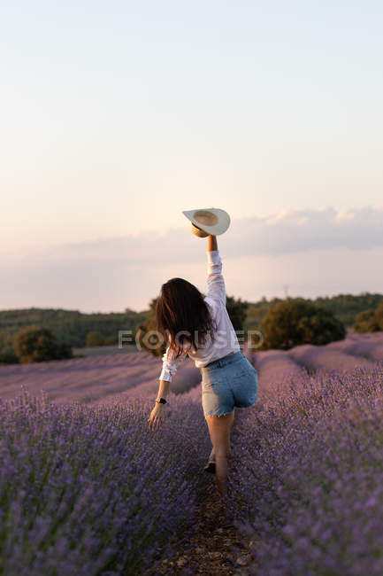Back view of stylish young female walking near flowers and waving hat in large lavender field in countryside. — Stock Photo