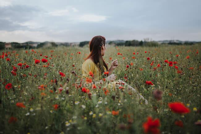 Психічна, руда жінка у жовтому вбранні з червоним маком у волоссі та червоних губах, озираючись, сидячи на самоті в розмитому зеленому лузі з червоними та білими квітами на пагорбах під сірим хмарним небом. — стокове фото