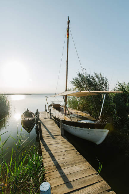 Wooden rural wharf with tied vessels by green bushes at peaceful lagoon on summer day in Valencia — Stock Photo