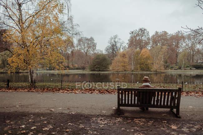 Vista posteriore del maschio adulto in cappello seduto sulla panchina vicino al lago calmo mentre riposa nel parco autunnale di Londra — Foto stock