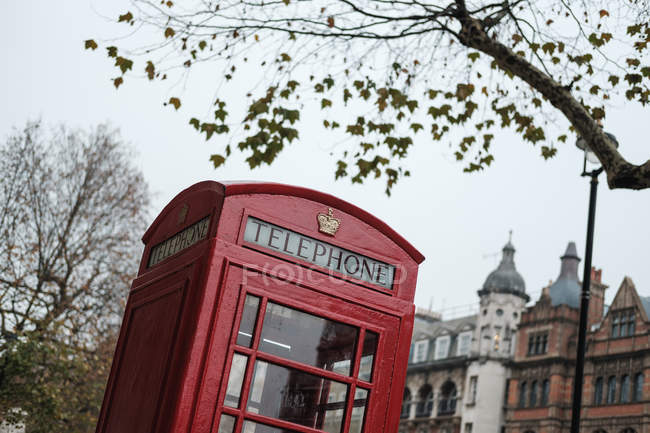 Снизу традиционная красная телефонная будка, расположенная на улице Лондона, напротив осенних деревьев и старых зданий — стоковое фото