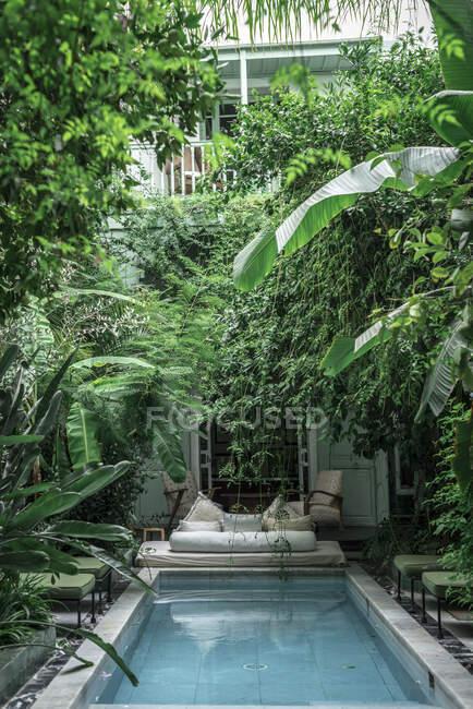 Piscina e divano situati in mezzo a verdi piante esotiche fuori dall'edificio dell'hotel a Marrakech, Marocco — Foto stock