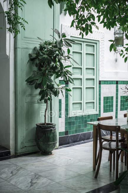 Albero in vaso e tavolo con sedie situato fuori dal tradizionale edificio arabo con pareti verdi sulla strada di Marrakech, Marocco — Foto stock