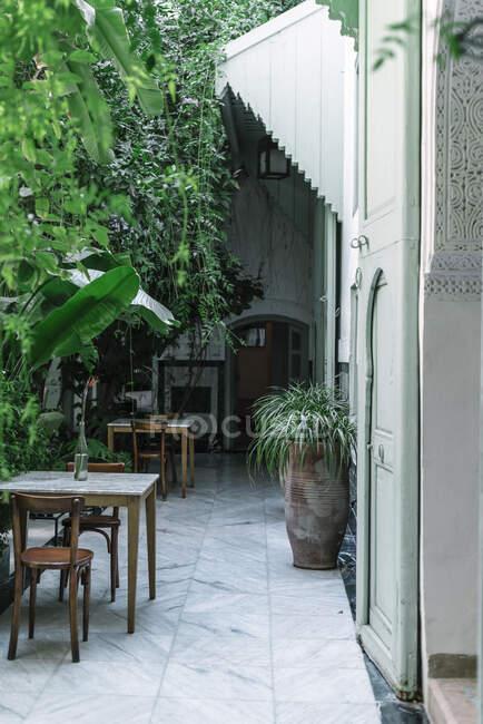 Pentole con piccoli alberi situati vicino all'ingresso ad arco della casa verde sulla strada di Marrakech, Marocco — Foto stock