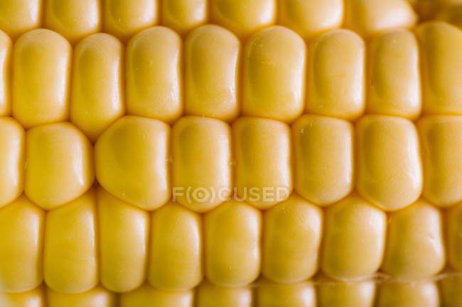 Frische gelbe Maiskörner in Reihen, Nahaufnahme — Stockfoto
