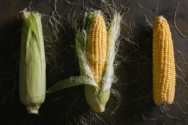 From above of arrangement of fresh harvested corn cobs on black background — Stock Photo