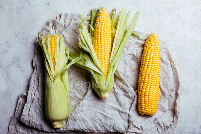 Arrangement of fresh harvested corn cobs on rustic cloth grey marble background — Stock Photo