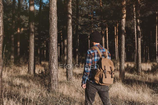 Confident tourist walking along autumn forest — Stock Photo