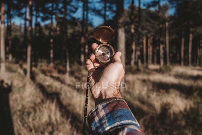 Обрезанный образ человека в клетчатой рубашке, держащего современный компас, стоя в холодном вечнозеленом лесу — стоковое фото