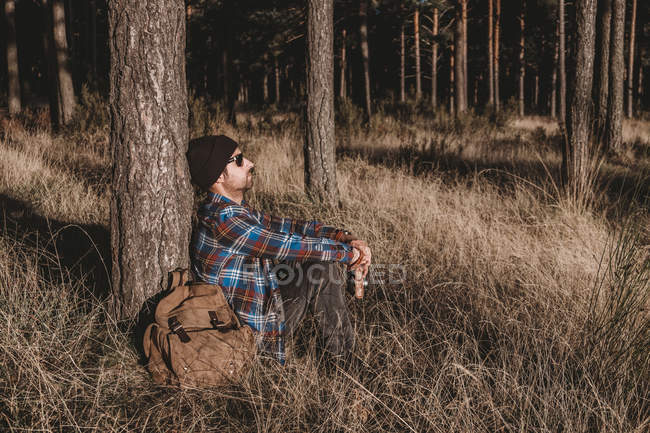 Rilassato turista che riposa sull'albero nella foresta — Foto stock