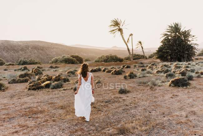 Rear view of woman in white dress walking in dry field in sunlight — стоковое фото