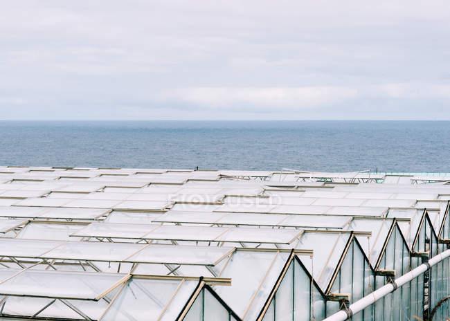 Высокий угол обзора стеклянных крыш теплиц — стоковое фото
