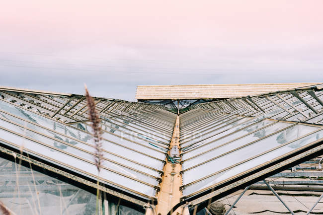 High angle view of Glass roofs of greenhouses — Stock Photo