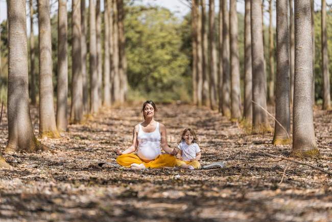 Pregnant mother with daughter practicing yoga on ground in glade among trees in park during sunny daytime — Stock Photo