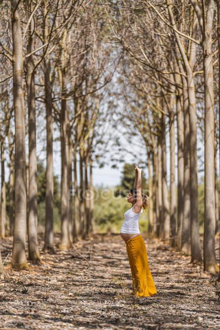 Madres embarazadas adultas practicando yoga en el parque durante el día soleado - foto de stock
