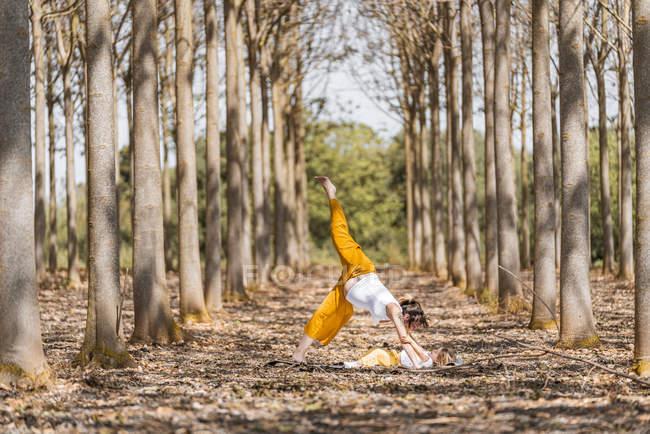Веселая беременная мать и дочь практикуют йогу в парке в солнечный день — стоковое фото